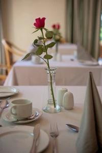 Oaktree Lodge Table Decoration-1