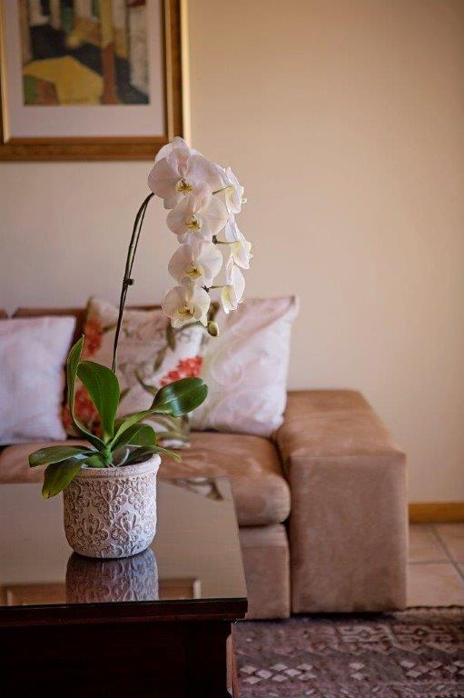 Oaktree Lodge Orchid