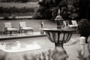 Oak Tree Lodge Fountain Black and White